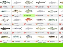 Welche Fische dürfen wir noch essen?