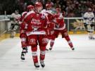 Eishockey: Kölner Haie - Straubing Tigers