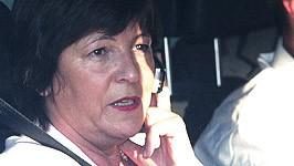 Ulla Schmidt, ddp