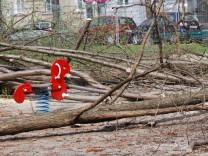 Bäume am Josephsplatz gefällt