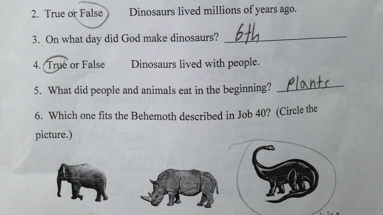 Us Schule Als Dinosaurier Und Menschen Zusammen Lebten Bildung