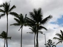 Die Zahl der Stürme wird aufgrund des Klimawandels auf Hawaii zunehmen.