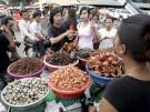 Insekten als Nahrungsmittel
