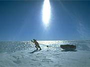 Antarktis, ap