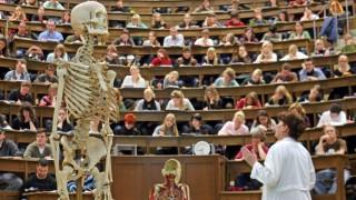 Ausgebremst beim Studienstart-Wartesemester sinnvoll überbrücken