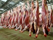 Tierschutzprobleme auf Schlachthöfen