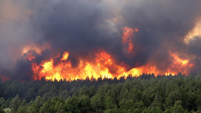Wildfire rages on in Black Forest