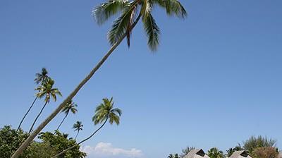 Tahiti Französisch-Polynesien: Tahiti