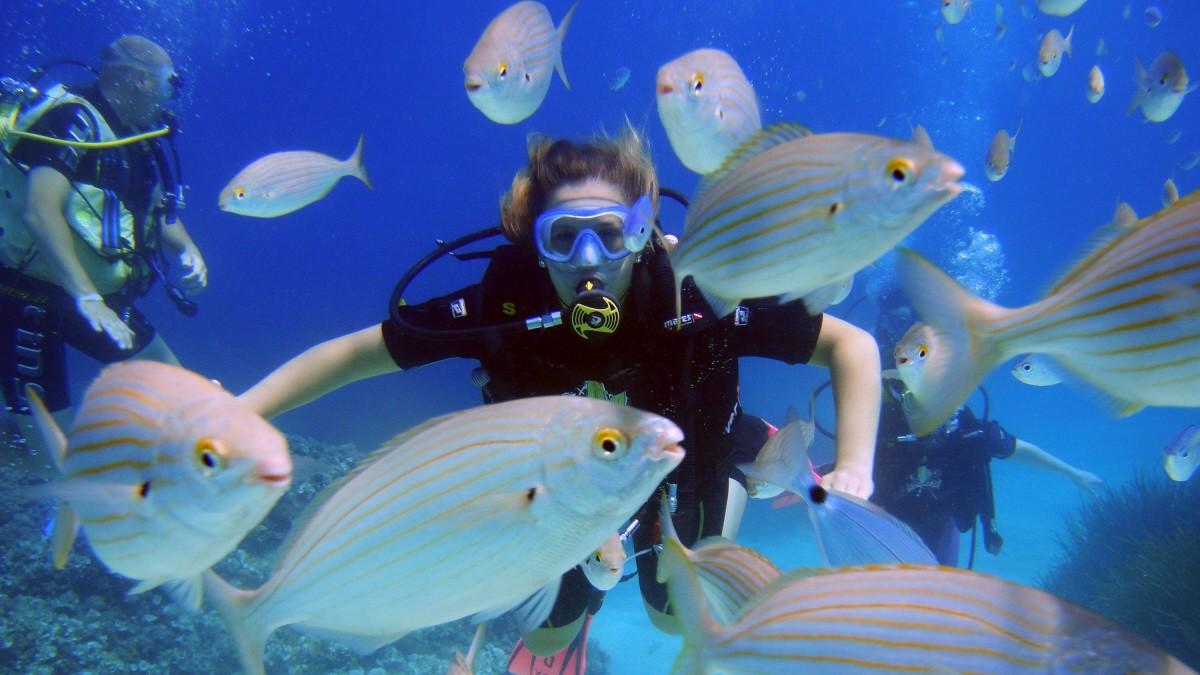 Traumhaft auch unter Wasser