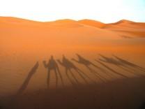 Ein Meer aus Sand: Mit dem Kamel durch Marokkos Sahara