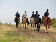 reiten, Pferd, Therapie, iStockphotos