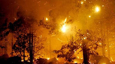 Brände auf La Palma