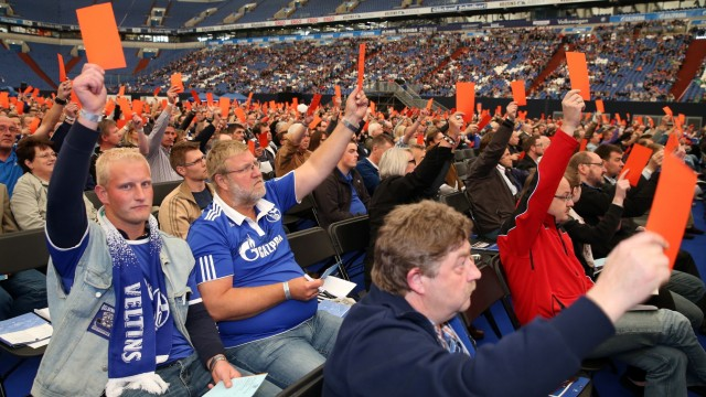 Schalke 04 - Annual Meeting 2013
