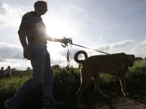 Ein Spaziergänger geht mit seinem Hund an der Leine spazieren.