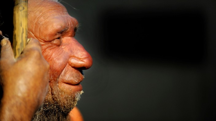Neandertaler waren nicht unterlegen