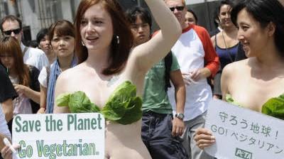 Vegetarier Die vegetarische Revolution