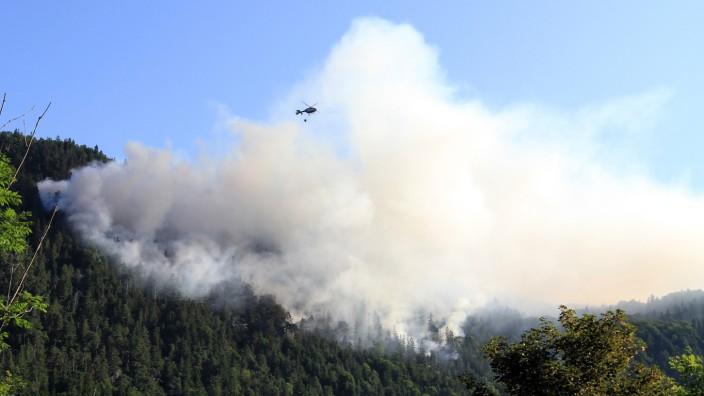 Waldbrand am Thumsee