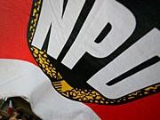 npd-fahne; dpa