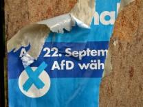 AfD Wahlkampf Euro