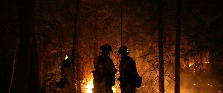 Rim Fire Burns Near Yosemite National Park