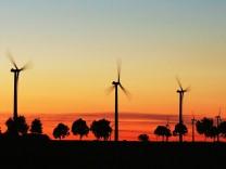 Windräder im Abendlicht