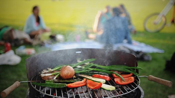 Gemüse Grill