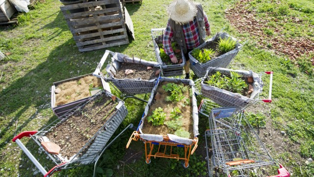 Garten-Trends 2016: Upcycling, Hochbeete Und Hortensien - Stil