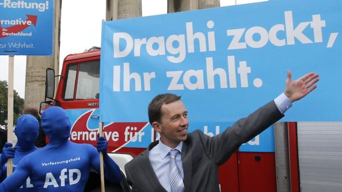 File photo of Alternative fuer Deutschland leader Lucke