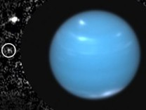 Die Monde des Neptun