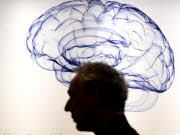 Gehirn dpa