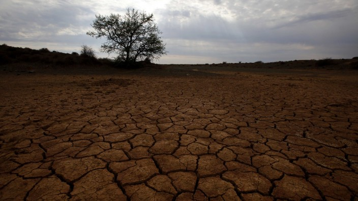 Cracked earth marks a dried up watering hole on a farm near Aberdeen in the Karoo
