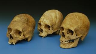 Archäologie Rätselhafte Funde