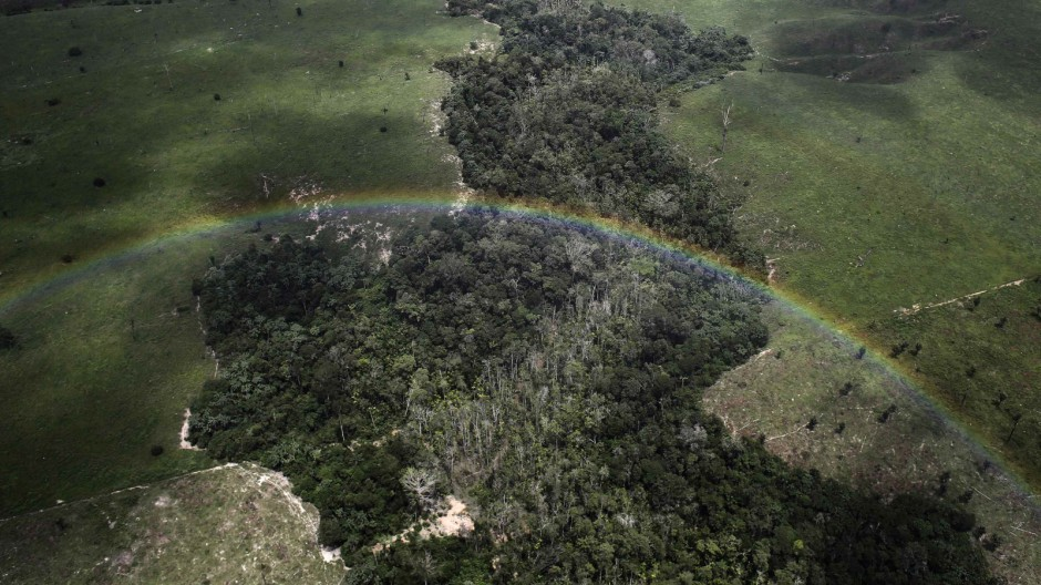 A rainbow is seen over a tract of Amazon rainforest which has been cleared by loggers and farmers for agriculture, near the city of Uruara