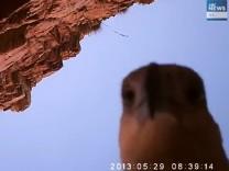 Adler klaut Kamera und filmt sich selbst