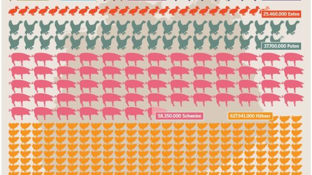 Fleisch Fleischatlas Grafik