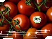 Bio-Tomate Ernährung