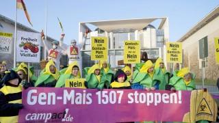 Anlässlich der Sitzung des Bundeskabinetts Gen Wissenschaftler demonstrierten am Mittwoch 05 02 201
