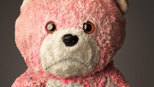 Teddybären Erwachsene und Kuscheltiere