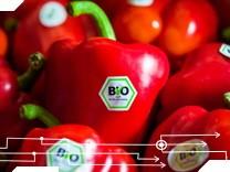 Bio-Produkte