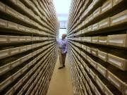 Holocaust-Archiv  Bad Arolsen AP