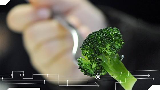 Fressen und Moral Vegane Ernährung