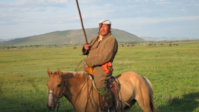 Mongolei, Reiter, Steppe