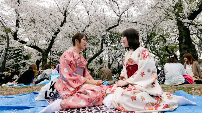 Japanese people enjoy cherry blossoms in Tokyo