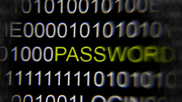 File picture illustration of the word 'password' pictured on a computer screen taken in Berlin
