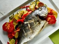 Dorade Kochnische Foodblog