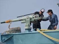 Japan geht wieder auf Walfang