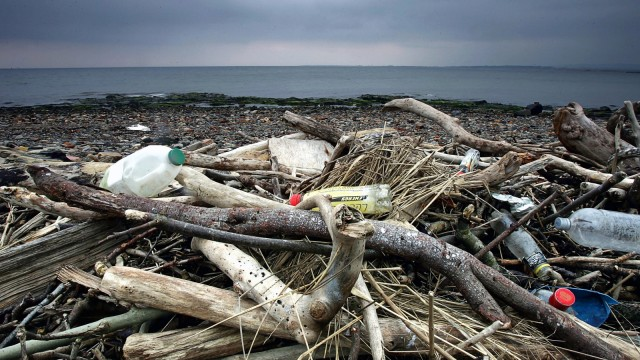 Rubbish Litters UK Beaches
