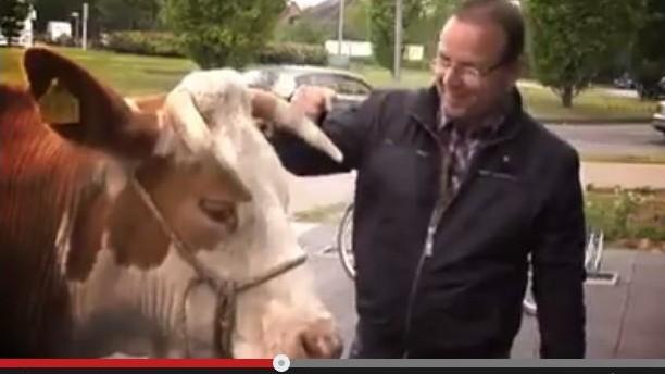 CDU Ahaus wirbt mit Kuh bei Youtube
