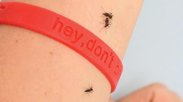 Mückenarmband