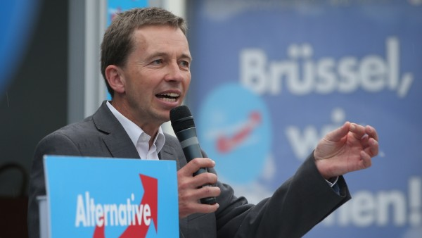 AfD Campaigns In European Parliamentary Elections